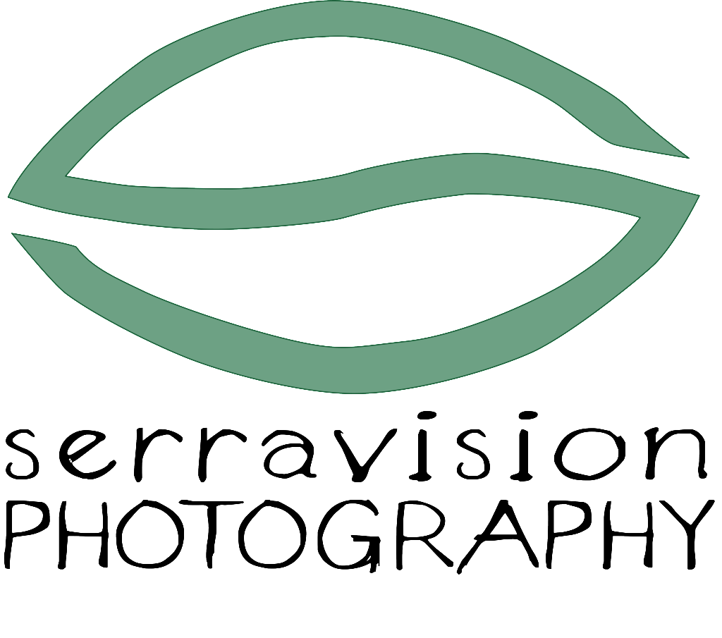 Serravision